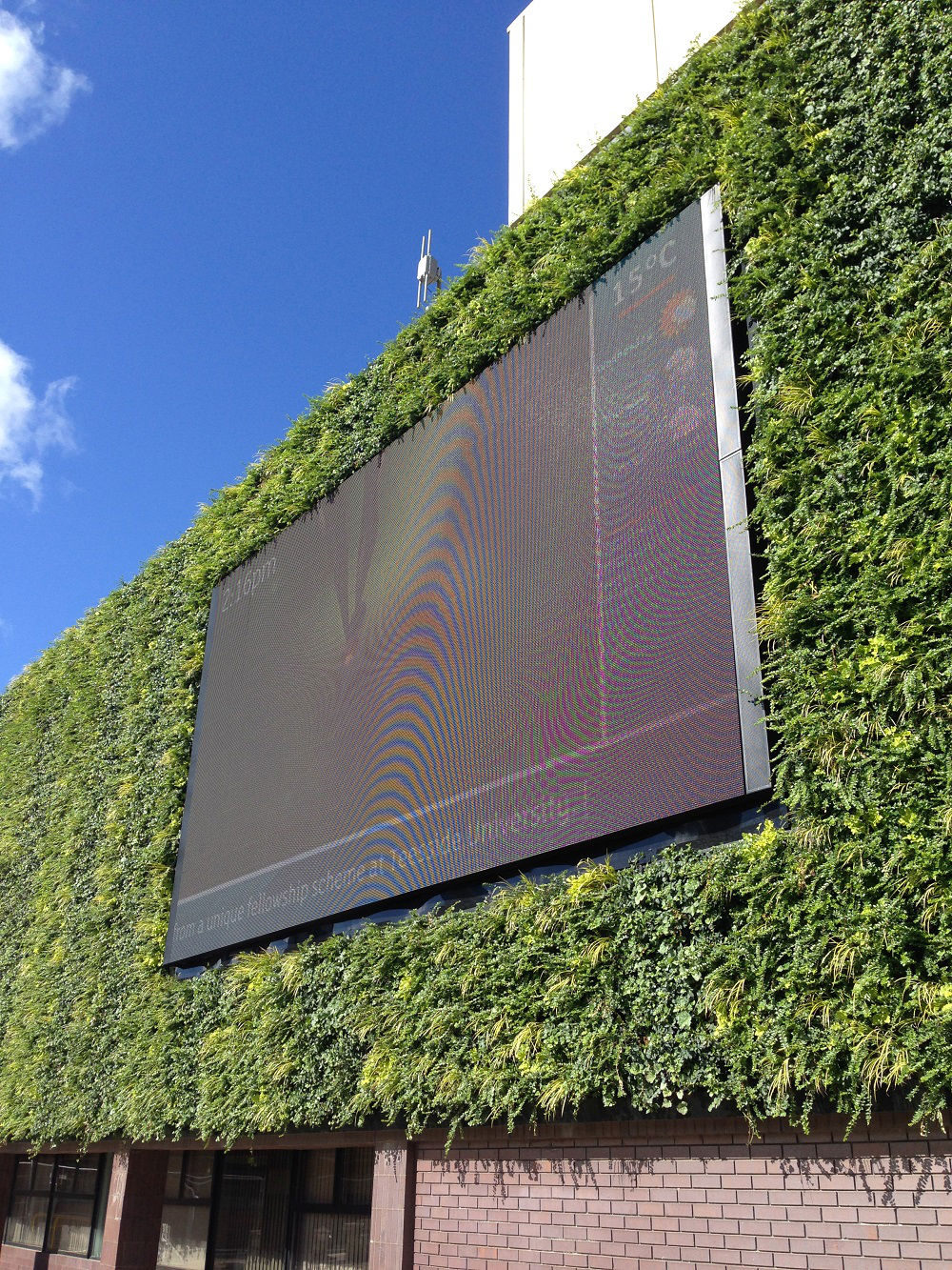 Combining Drainage And Plant Life With An LED Screen Required Specialist  Designs To Ensure That The Separate Entities Were Coordinated Seamlessly.